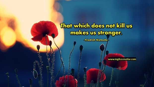 ingilizce-Friedrich-Nietzsche-Bizi-öldürmeyen-şey-bizi-daha-da