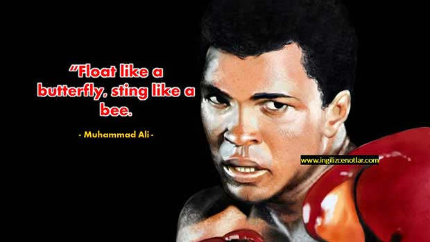 İngilizce-Muhammad-Ali-Kelebek-gibi-uçarım-arı-gibi-sokarım