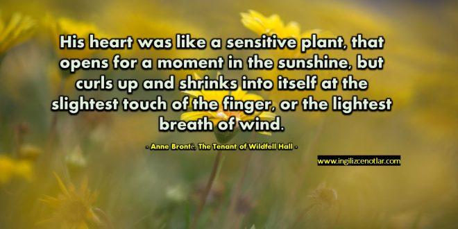 Anne Brontë - Kalbi hassas bir bitki gibiydi, güneşte bir an için açılıyor...