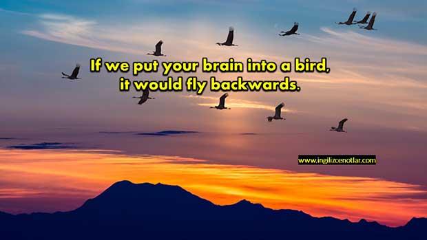 ingilizce-Sendeki-beyni-kuşa-taksak-ters-uçar