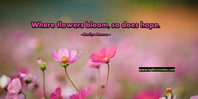 Lady Bird Johnson - Çiçeklerin açtığı yerde umutlar...