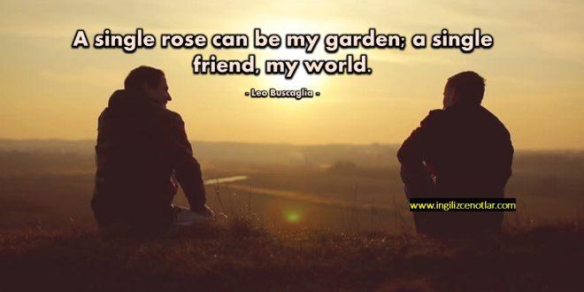 Leo Buscaglia - Tek bir gül benim bahçem olabilir...