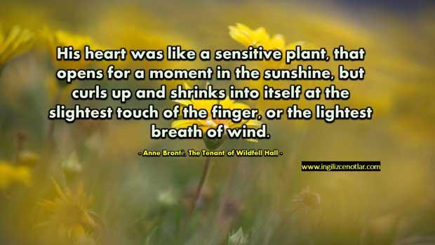 Anne-Brontë-Kalbi-hassas-bir-bitki-gibiydi