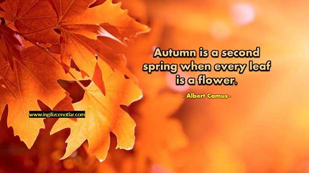 İngilizce-Albert-Camus-Sonbahar,-ikinci-bahardır;-yaprakların